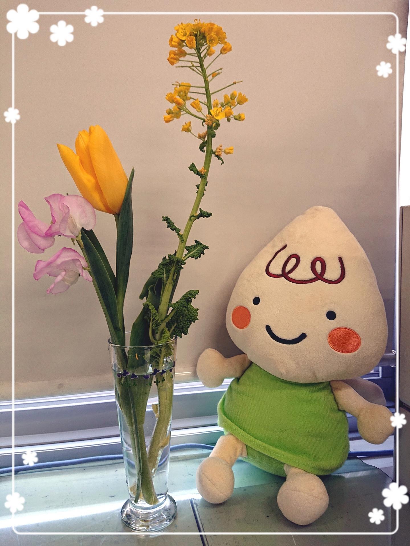 菜の花・チューリオップ・スイートピー